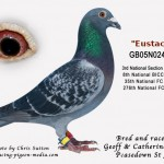 GB05N02429 Eustance